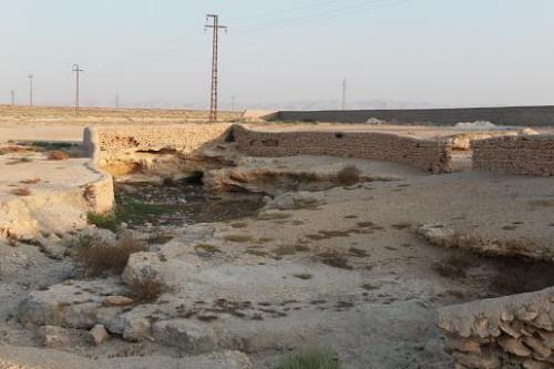 Al Ain Gartenrenovierung