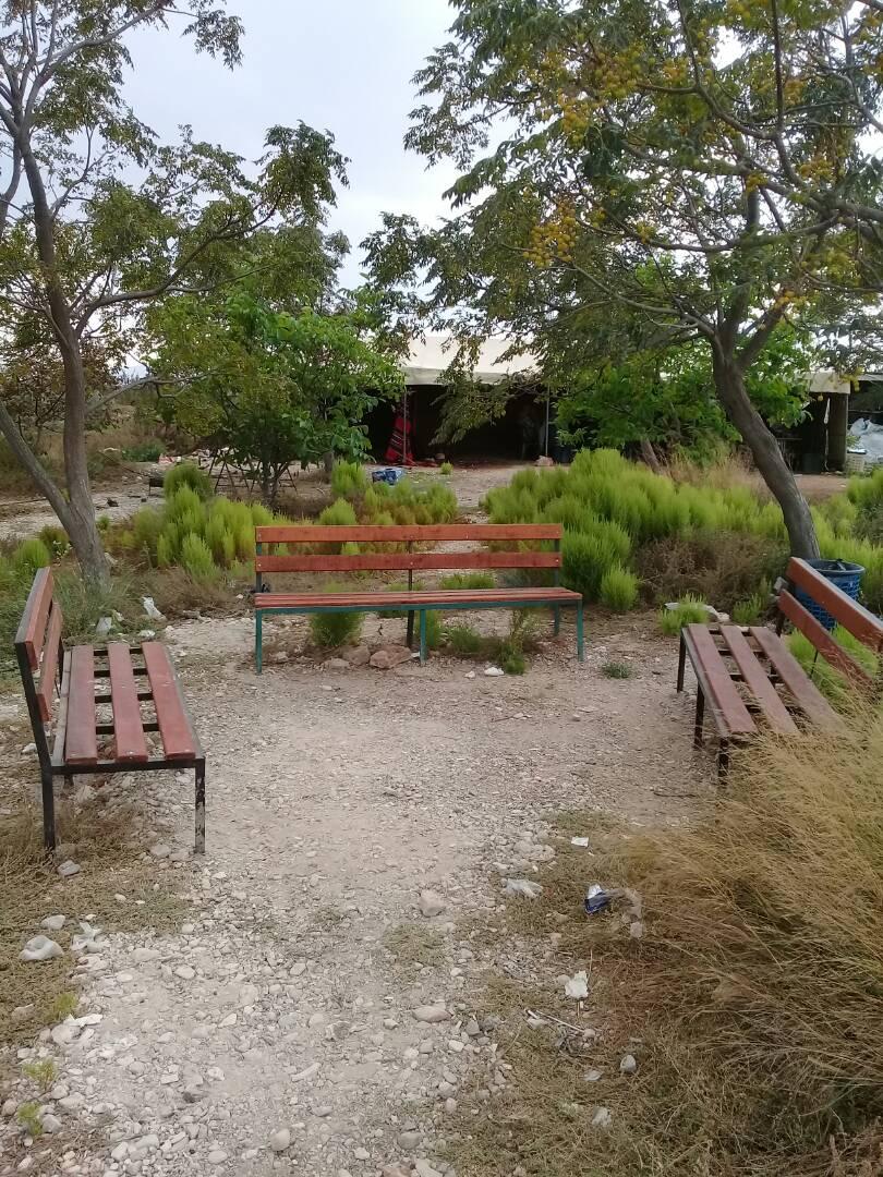 alain-garden02